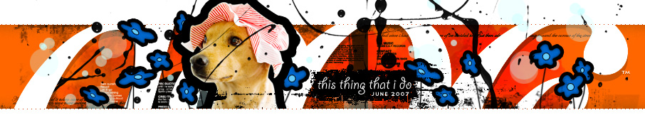 dooce.com Masthead for June 2007 by Heather B. Armstrong titled This Thing That I Do