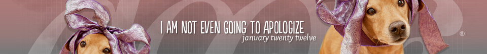 dooce.com Masthead for January, 2012 titled I'm not even going to apologize